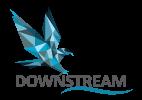 Logo Downstream100x142